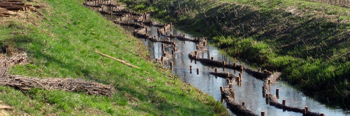 Bach im Fluss